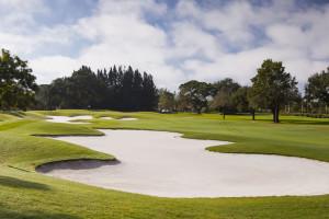 public-golf