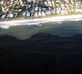 Florida Restaurant & Lodging Association - FRLA